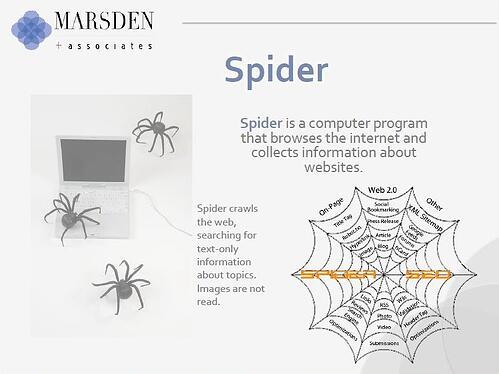 Spider, SEO, Inbound marketing
