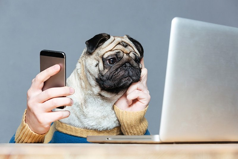 How to Find Great Outsider Content for Your Social Media Channels